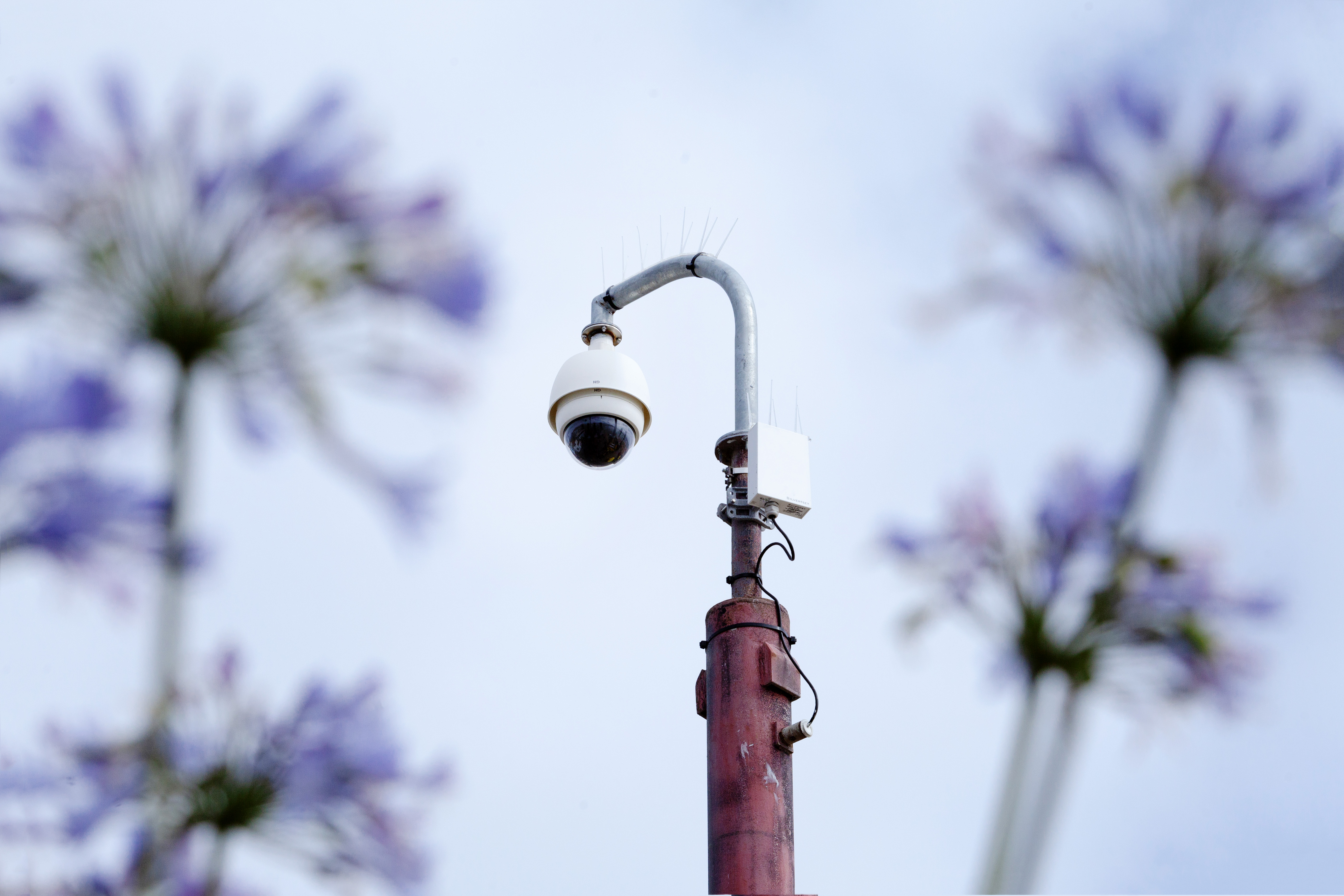 St Ives BID - CCTV. The importance of photography.